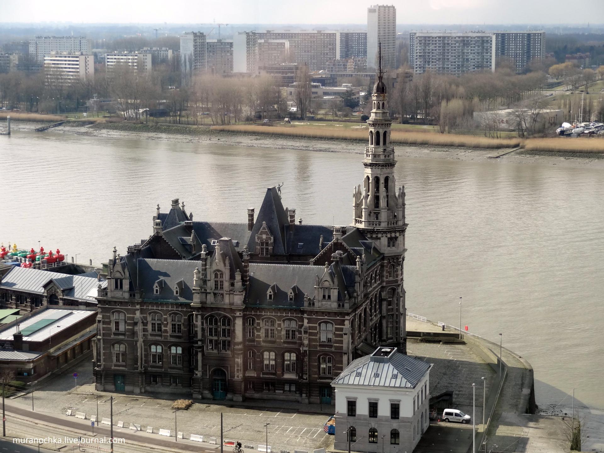 управление лоцманской службы антверпенского порта